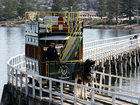 Victor Harbor Horse Drawn Tramway